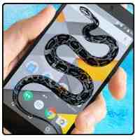 Snake Screen Terrible Joke APK 1.1 Latest Free Download for Android