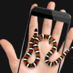 Snake in Hand Joke iSnake APK 3.2 Latest Free Download for Android