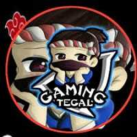 Gaming Tegal Injector